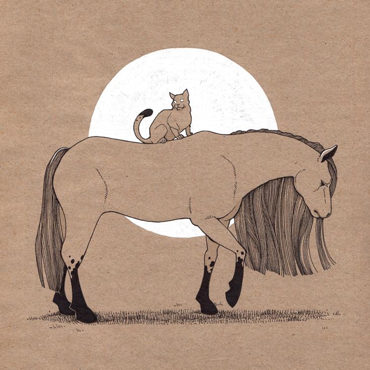 Cat On Horse - Natalia Stolarska